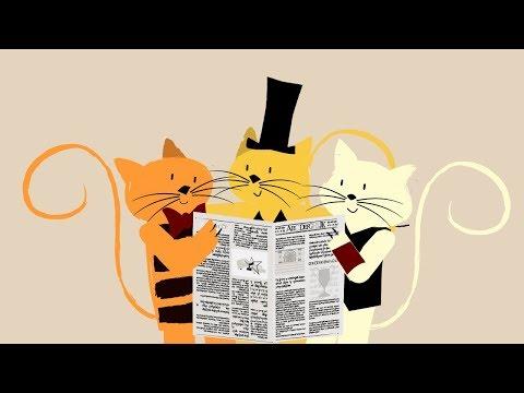 Xxx Mp4 Chacarera De Los Gatos Canciones Para Soñar Petits Habitants 3gp Sex