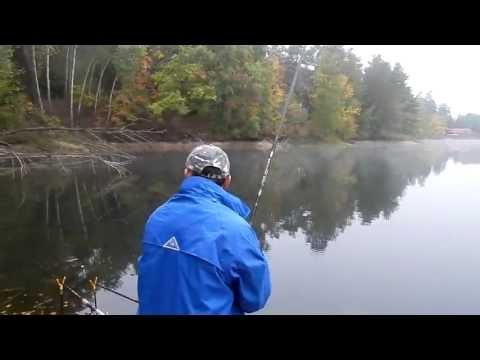 на что ловить рыбу на реке оскол