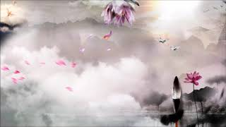 【古风、琵琶、二胡】 16首 轻音乐 中国风音乐 Chinese Instrumental Music