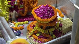 Kashi Vishwanath Darshan and Mangala Aarti by Dr. Vijay Rana
