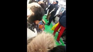 2 older guys fighting on the train in Seoul 아쩌시 싸움 지하철