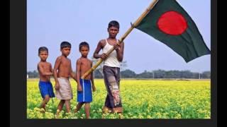 National Flag of Bangladesh   Bangladeshi Flag   bangladesh national flag