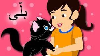 Billi Mein Ne Pali Hai and More   بلّی اردو نظم   Urdu Nursery Rhymes for Kids