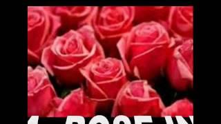 A ROSE IN THE WIND -ANGUN- con Testo.avi