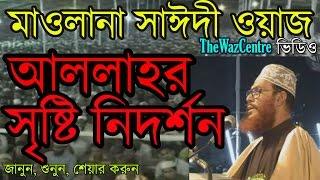 আল্লাহর সৃষ্টি নিদর্শন। * Bangla Waz* by Mawlana Delwar Hossain Saidi.
