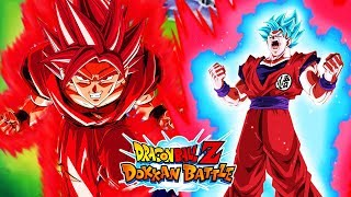 WHICH IS BETTER? SUPER SAIYAN BLUE KAIOKEN vs SUPER KAIOKEN GOKU! DBZ DOKKAN BATTLE!