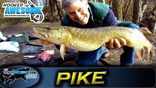 Pike fishing for Beginners - Deadbaiting and Floats | TAFishing