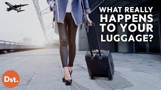This is What REALLY Happens to Your Luggage!