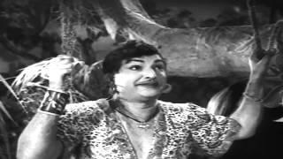 Bandipotu   Vagala Ranivi Neeve Video Song   NTR, Krishna Kumari