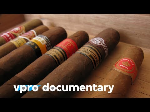 Capitalising happiness (vpro backlight documentary)