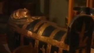 فيلم وثائقي عن الفرعون توت عنخ آمون ـ  Pharaoh Tutankhamun