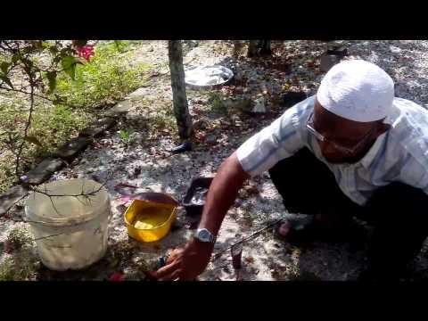 Cara membuat batu pancing wak roni