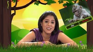 Learn Hindi For Children | हिंदी सीखें | हिंदी व्याकरण | Learn Hindi Grammar | Hindi Lessons