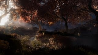 Creating a quick Unreal Engine 4 forest scene
