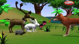 Rabbit and Hedgehog | हिंदी कहानी | 3D Moral Stories For Kids in Hindi | Animal Stories in Hindi