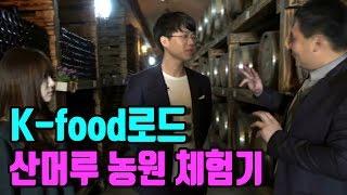 보겸X인아짱] K-food로드 산머루 농원 체험기 하이라이트