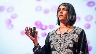 Sonia Shah: 3 reasons we still haven't gotten rid of malaria