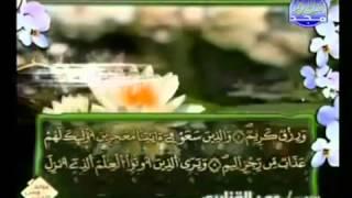 الجزء الثاني والعشرون (22) من القرآن الكريم بصوت الشيخ عمر القزابري