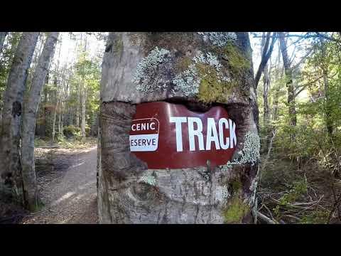 Mt Chrichton Loop Track, Sam Summers Hut, Accommodation next to Queenstown