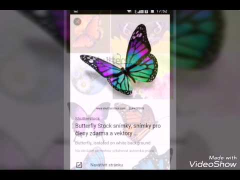Xxx Mp4 Buttefly Google Www Google Com Buttefly 3gp Sex