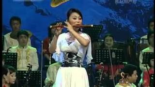 《牧民新歌》演奏:曾格格 南京民族樂團等
