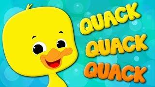 Ducks Song | Kids Nursery Rhyme | Original Song | Baby Rhymes | Video For Children