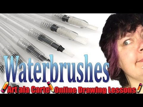 First Impressions on waterbrushes