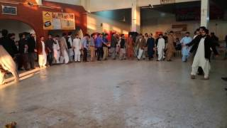 Latest Pakhtoon Dance video 2017 Quaid.e.azam University