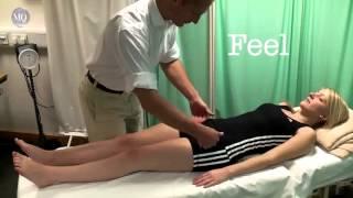 Hip OSCE Examination