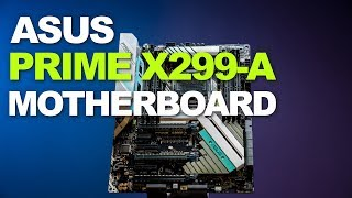 Newegg Insider: ASUS PRIME X299-A Motherboard Overview