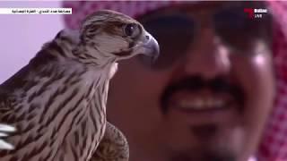 هدد فرخ شاهين مهرجان مرمي (هدد التحدي) 2017/1/14