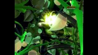 My Home is Green   Award Winning   Animation   Movie In English