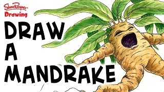 How to draw a Screaming Mandrake - Harry Potter