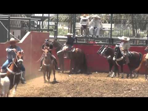 Resumen Coleadero El Carrisal Jalisco. Sábado 19 de Mayo 2012