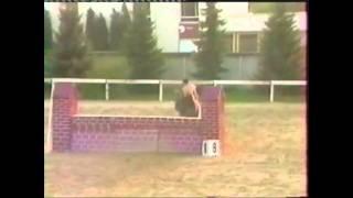 Naked Horse Jumping