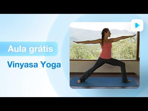 Xxx Mp4 Aula De Yoga Para Iniciantes Vinyasa Yoga Fernanda Cunha 3gp Sex