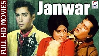 Janwar | Shammi Kapoor, Rajendernath | 1965 | Full HD Movie