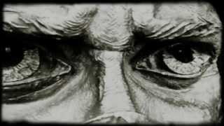 Silent cry - Sasan Azodi & Sanaz Zaresani (dedicated to all people in free fall)