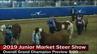 2019 Junior Market Steer Show - Day 2