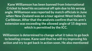 Kane Williamson Kiwi batsman banned to bowl