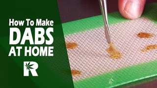 How To Safely Make Cannabis Wax At Home (Rosin with T-REX Press) Cannabasics #53