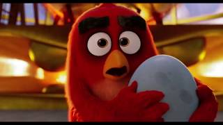 Angry Birds (2016) - Funniest Scenes