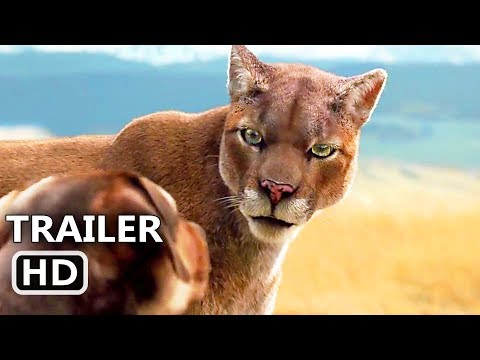 Xxx Mp4 A DOG S WAY HOME Official Trailer NEW 2019 Adventure Family Movie HD 3gp Sex