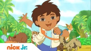 Go, Diego, Go | Tema Musical 🎤 | Nick Jr.