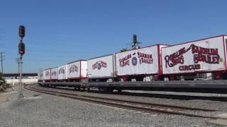 Circus Train in Los Angeles