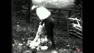 Vintage home movie footage: Sheep Shearing 1930 Balscote, Banbury Oxfordshire