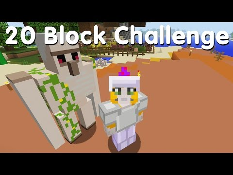 Minecraft PS4 20 Block Challenge Body Guard 31