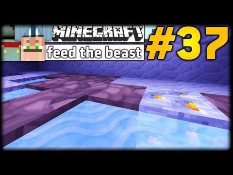 SEX VOR DER CAM! - #37 - Minecraft Feed The Beast