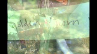 Albatross (alternate version) Video