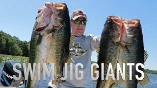 BEST day of bass fishing EVER! So many GIANT FISH!!